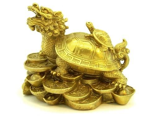 Dračí želva Pi-Si